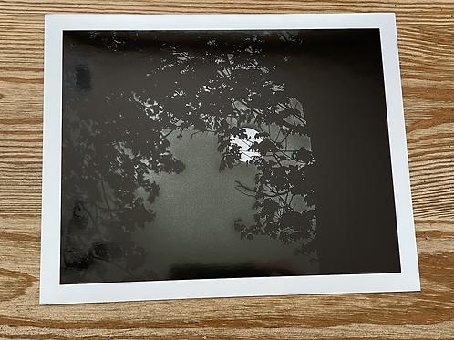 Spooky Moonlight 8x10 Metallic Paper
