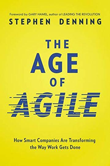 b13 age of agile.jpg