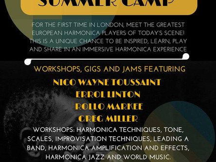 Summer harmonica camp 2014