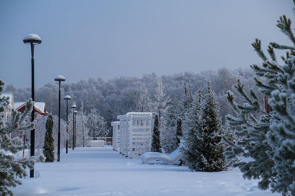 Зима 8416_2___1000_800____nowm.jpg