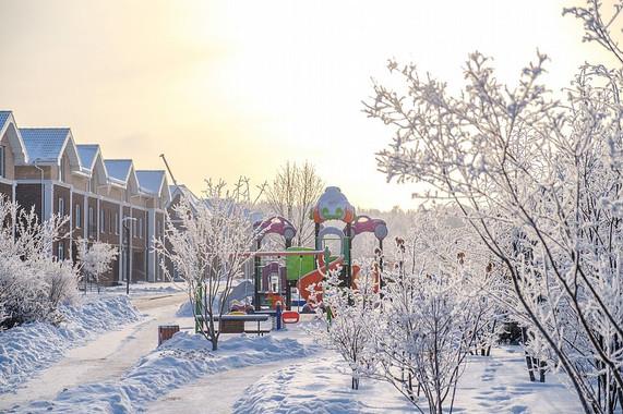 Зима 8447_2___1000_800____nowm.jpg