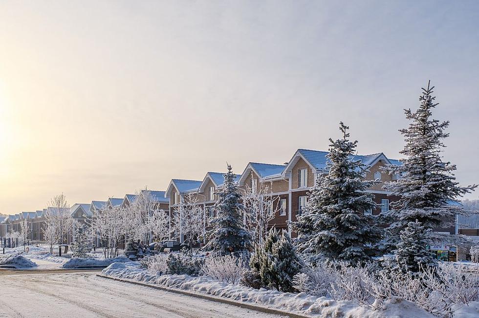 Зима 8442_2___1000_800____nowm.jpg
