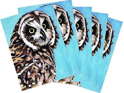 4x6 Postcards