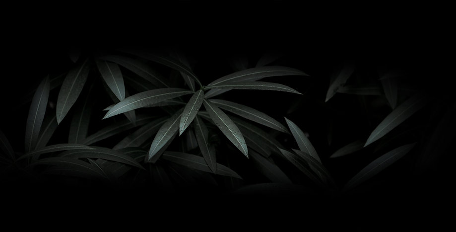 Драматические листья