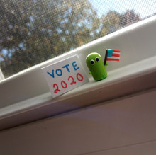 Vote 2020 Cactus