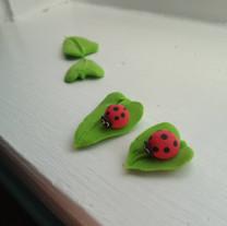 Lady Bug Leaves