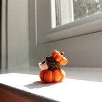 Pumpkin Hedgehog