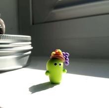 Fruit Hat Cactus