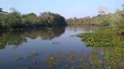desafio_pantanal_2019 (304)