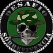 desafio_arte.png