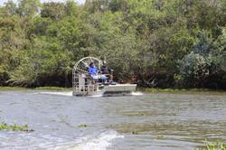 desafio_pantanal