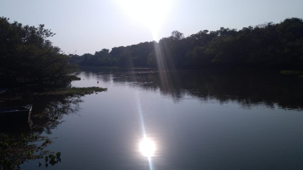 desafio_pantanal_2019 (302)