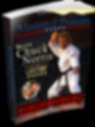 paperbackbookstanding_848x1126 (13).png