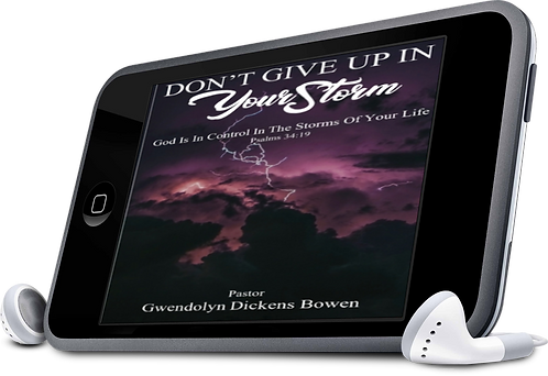 Don't Give Up In Your Storm Audio Book