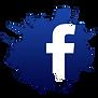 facebook-logo-55-300x300.png