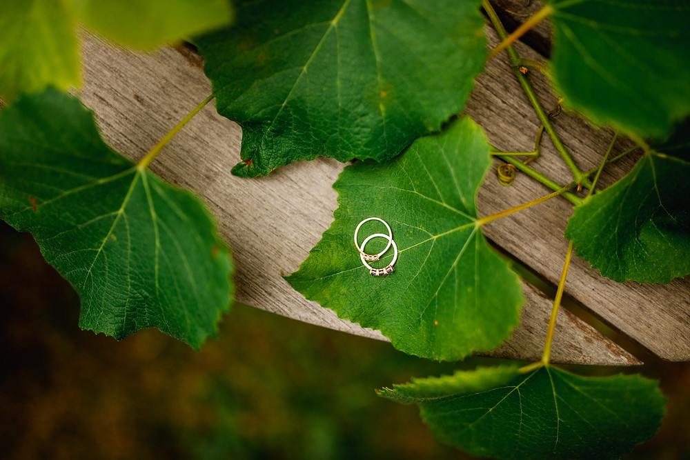 two wedding rings lay on each other on top of leaf