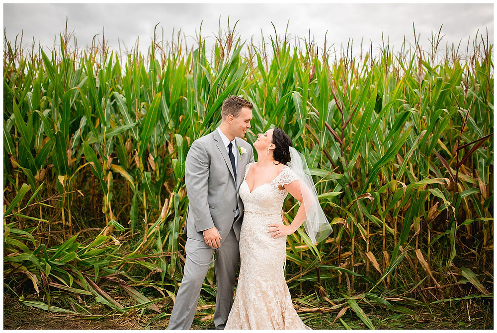 bride and groom stand near one another by a cornfield near amherst Ohio