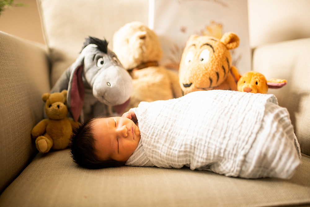 newborn baby boy is surrounded by Winnie the pooh stuffed animals near Cleveland Ohio