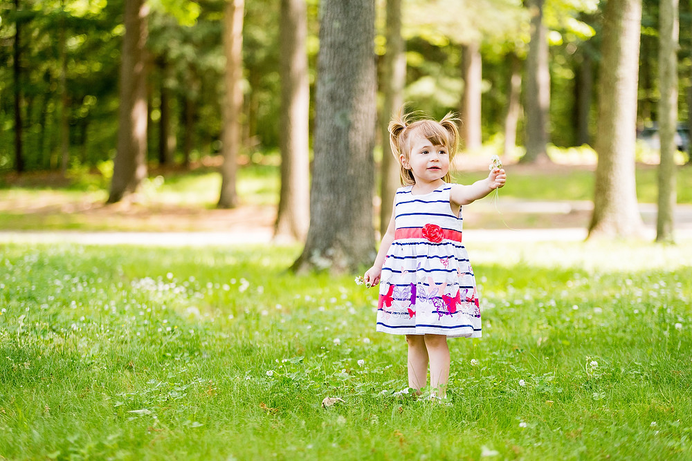 Little girl in a striped, flowery dress stands with a flower in her hand in South Windsor, CT