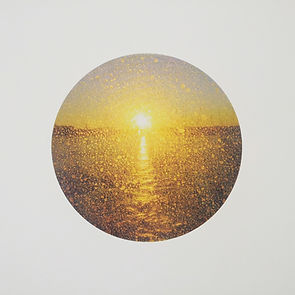 Lily - Sunset.jpg