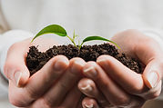 hand-holding-green-sprout-with-soil_23-2