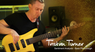 Sentiment Analysis | Bass Playthrough