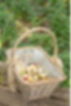 004-english-country-garden-camelot-style