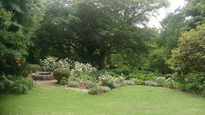 upper garden.jpg