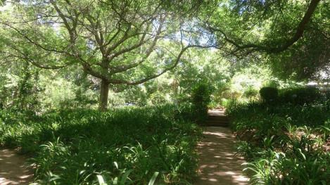 gardens .jpg