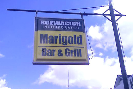 Marigold_fs.jpg