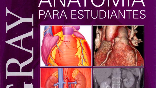 Gray. Anatomía para estudiantes 4ta Edición