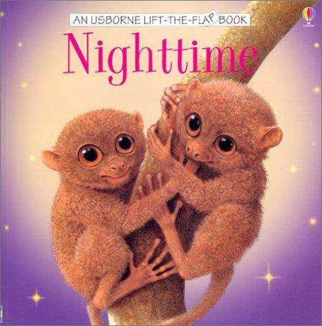 Nighttime Lift the Flap Book