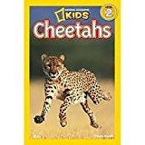 National Geographic Kids Cheetahs