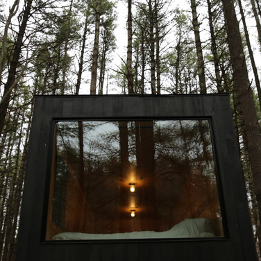 I Tried Out A Digital Detox In The Woods