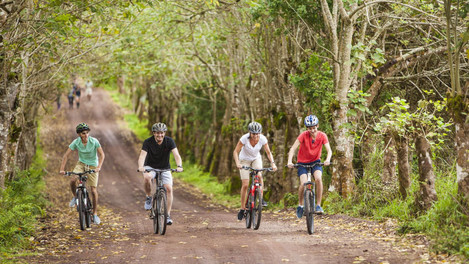 Bike-tour-with-four-guests.jpg
