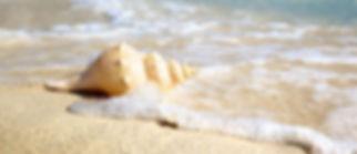 mare blu e sabbia dorata, a jesolo troverete la vostra oasi di pace