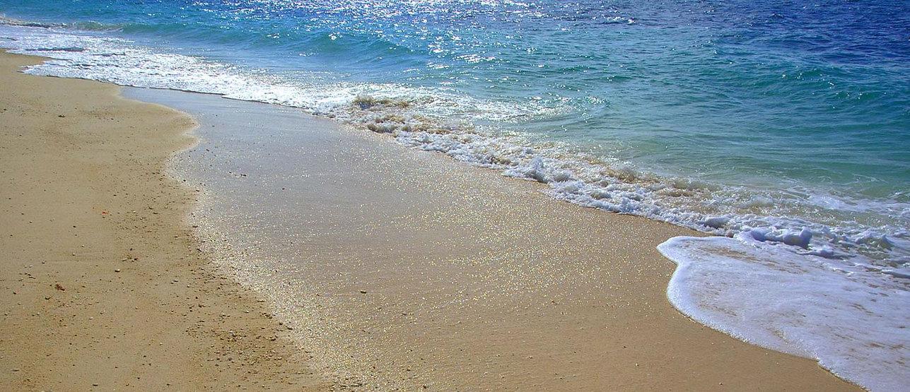 lunghe passeggiate al mare, guardate cosa vi aspetta tramit la webcam dell'hotel jet a jesolo