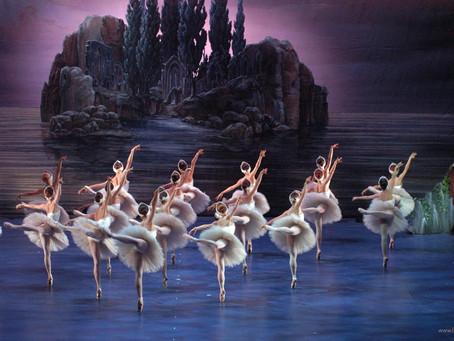 Il lago dei cigni a Jesolo