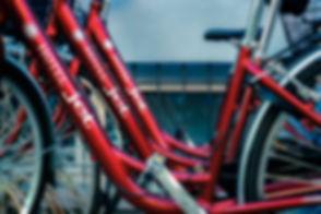usufruite del nostro servizio biciclette gratuito.