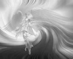 (C) Black/White Angel