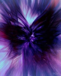 197C  Deep Purple