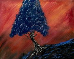 (C)  Tree 4