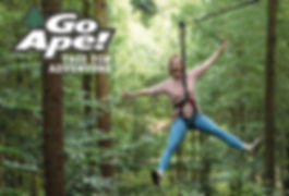 tree-top-adventure-for-11095733.jpg
