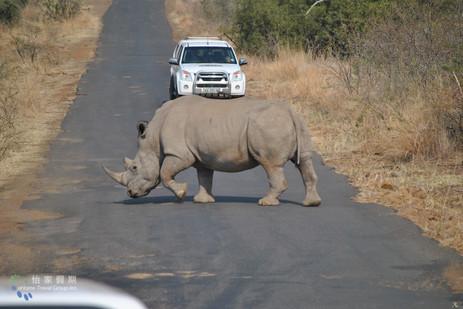 southafrica-0017.JPG