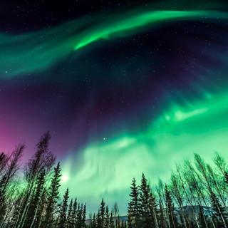 Aurora-Alaska.jpg