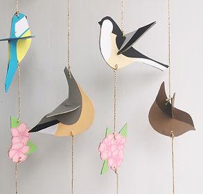 close up birds.jpg
