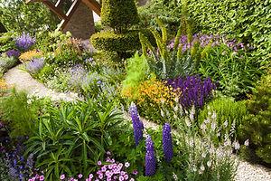 Tranquil garden landscape.jpg