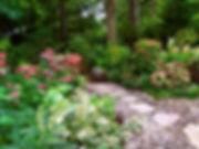 Eastwood_Natural_Garden_Landscape.jpg