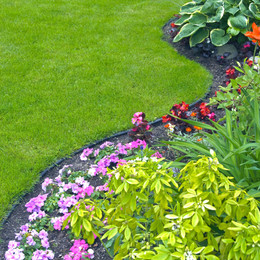 Landscaped Yard and Garden. A beautiful