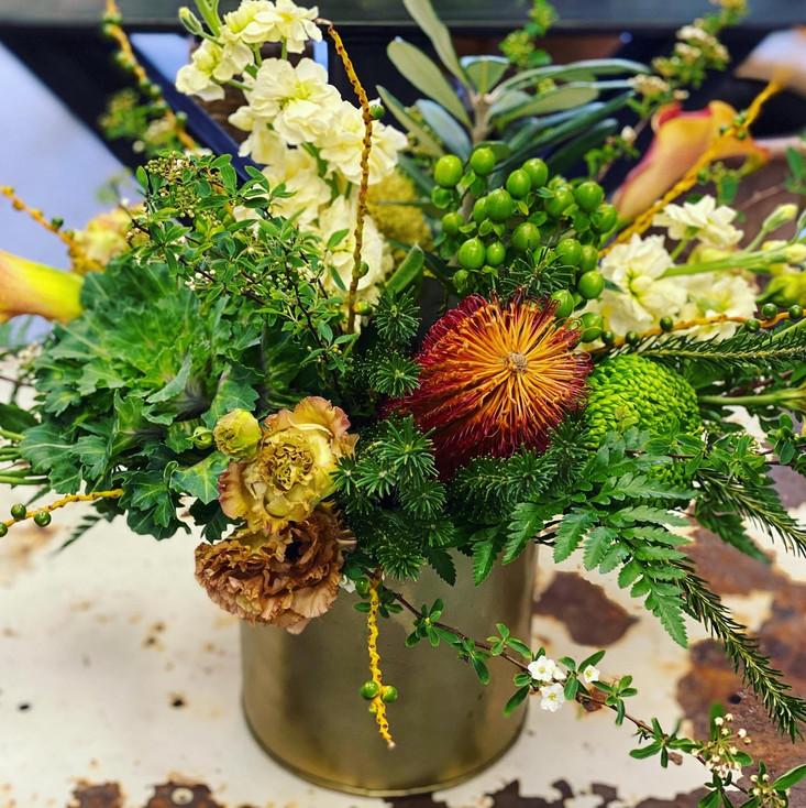 Flowers from Desert Poppy